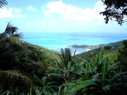 Britské Panenské Ostrovy, Tortola