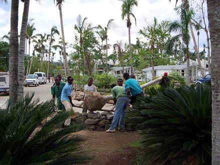 Dominikánská republika, Dominikánští dělníci