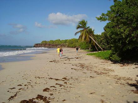 Martinik, Pláž Les Salines