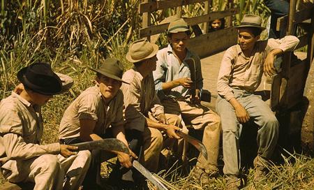 Portoriko, pole s cukrovou třtinou, odpočívající dělníci