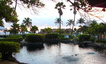 Portoriko, San Juan, tropická tvář města